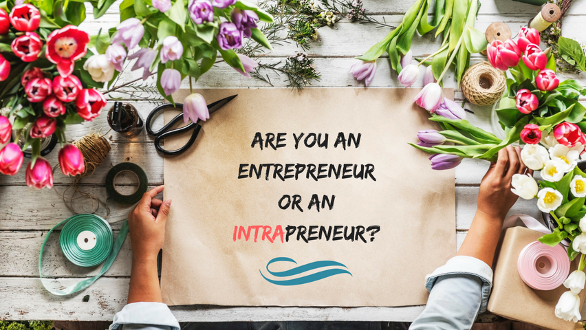 Are you an Entrepreneur or an Intrapreneur?